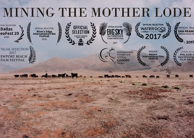 MINING-THE-MOTHER-LODE-1